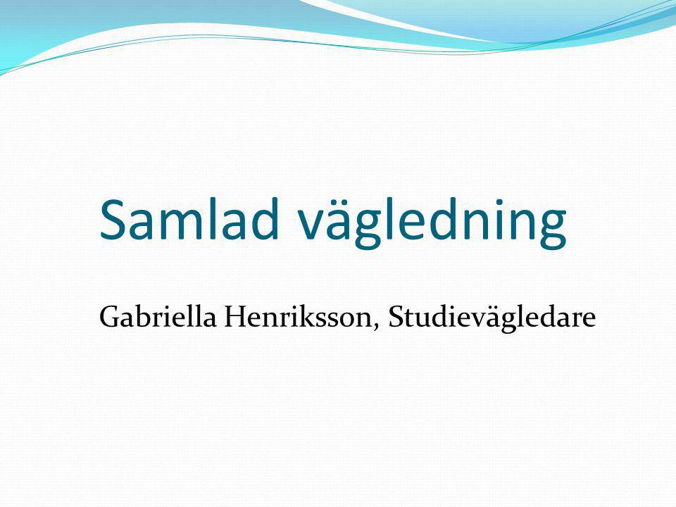 Gabriella Henriksson, Studievägledare