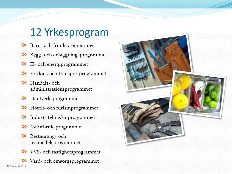 12 Yrkesprogram Barn- och fritidsprogrammet