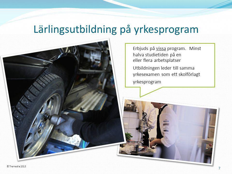 Lärlingsutbildning på yrkesprogram
