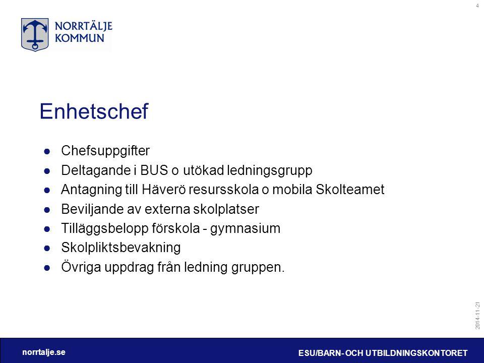 Enhetschef Chefsuppgifter Deltagande i BUS o utökad ledningsgrupp