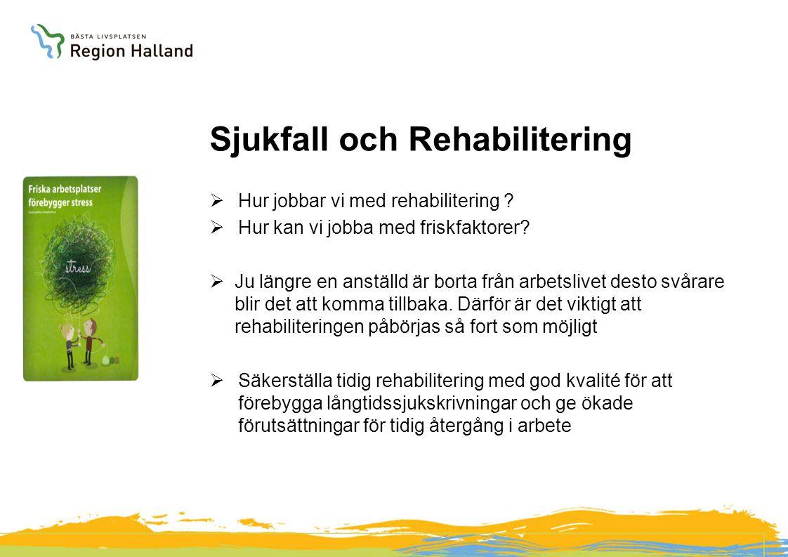 Sjukfall och Rehabilitering