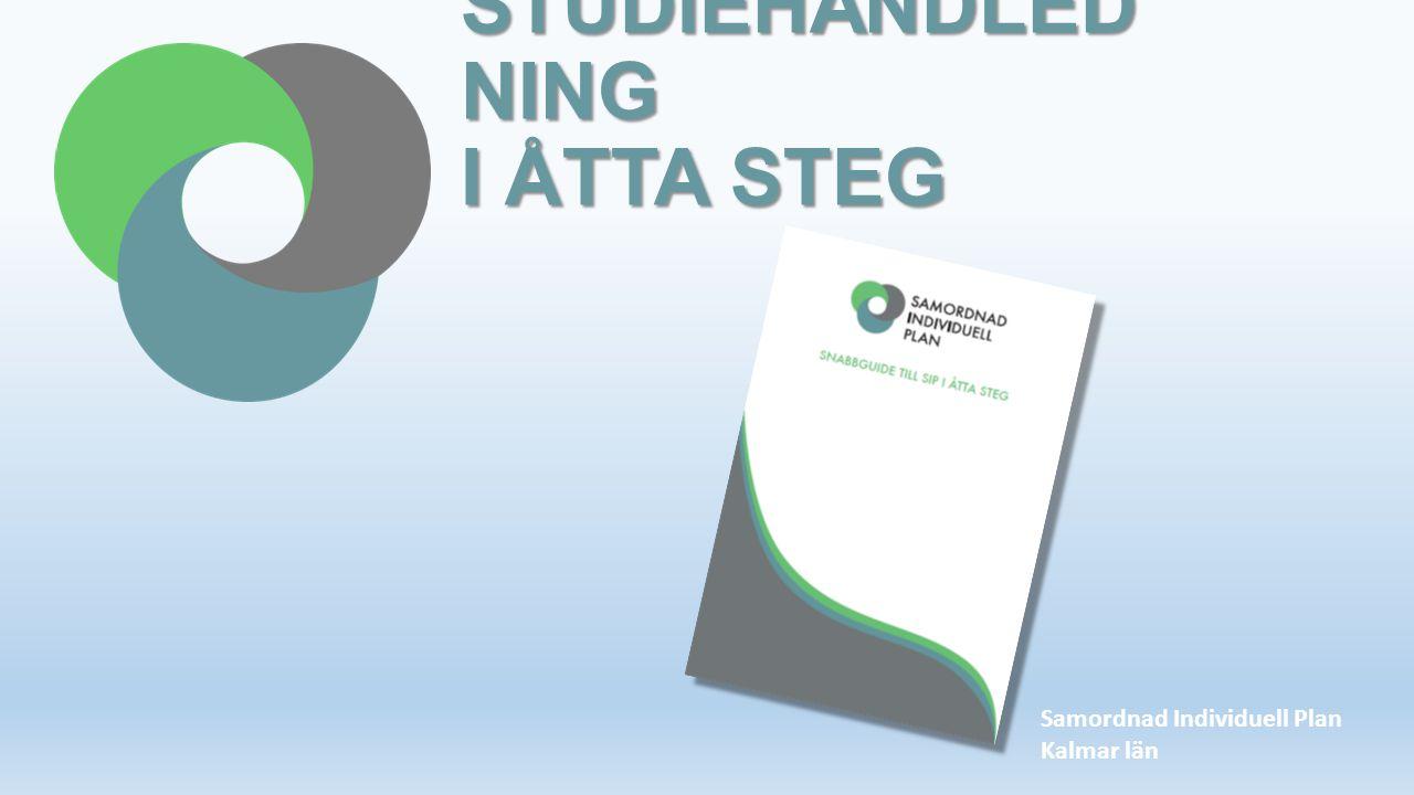 STUDIEHANDLEDNING I ÅTTA STEG