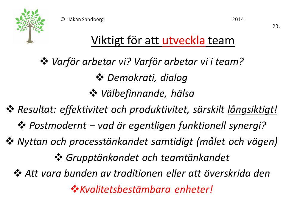 © Håkan Sandberg 2014 23. Viktigt för att utveckla team