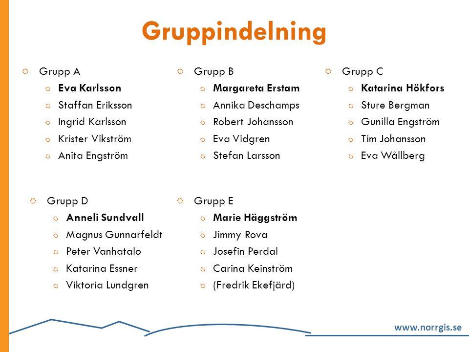 Gruppindelning Grupp A Eva Karlsson Staffan Eriksson Ingrid Karlsson