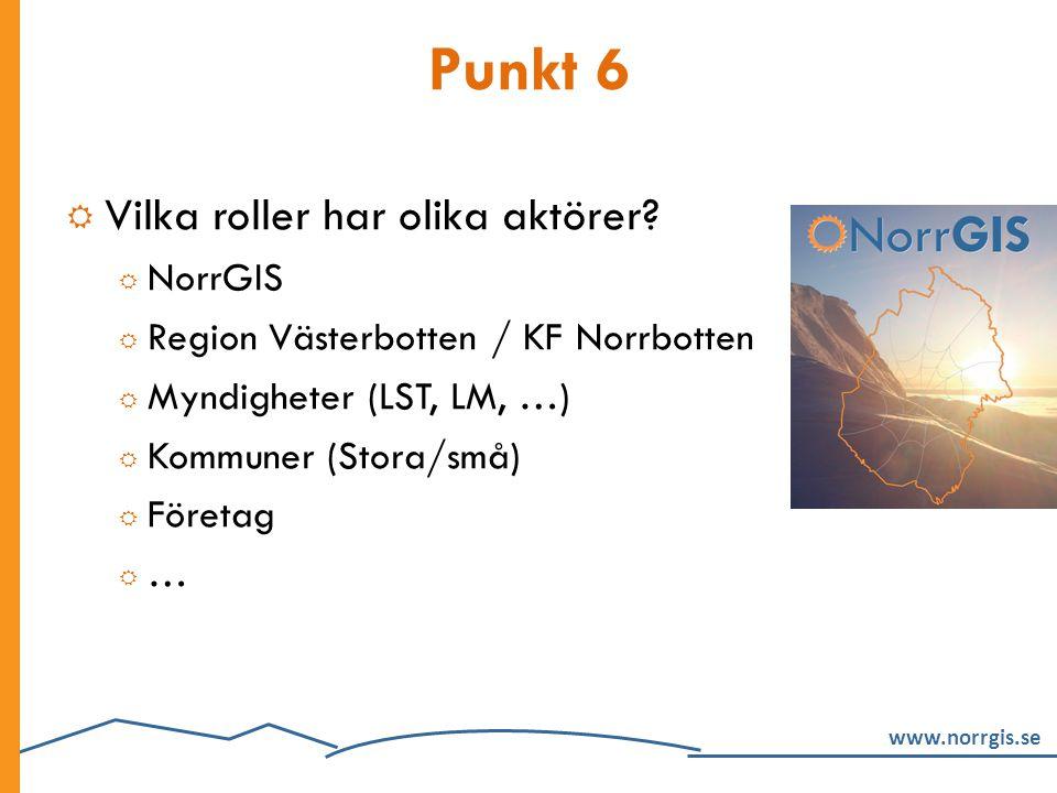 Punkt 6 Vilka roller har olika aktörer NorrGIS