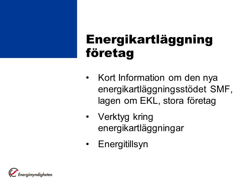 Energikartläggning företag