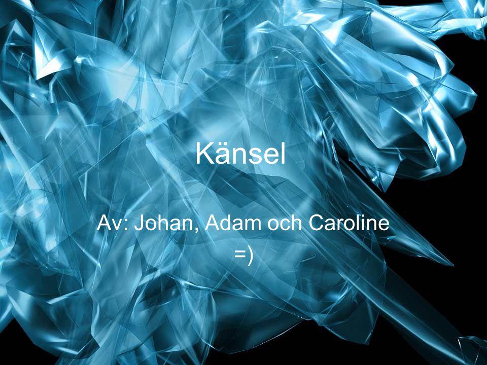 Av: Johan, Adam och Caroline =)