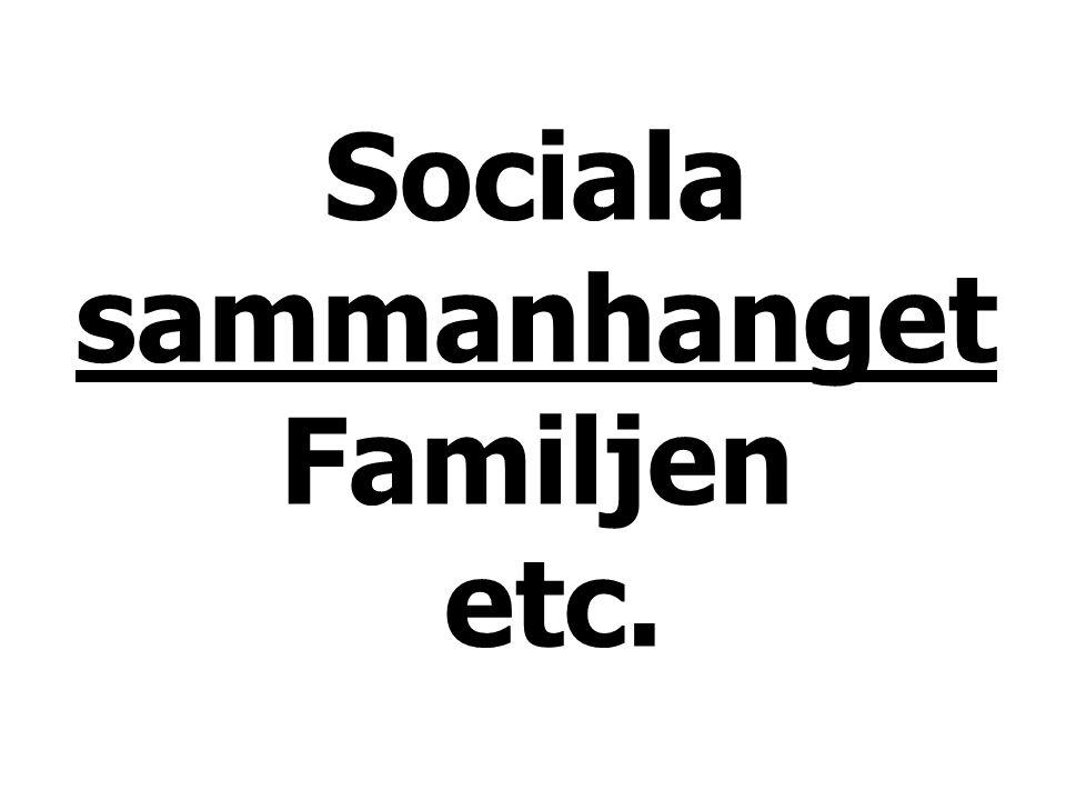 Sociala sammanhanget Familjen etc.