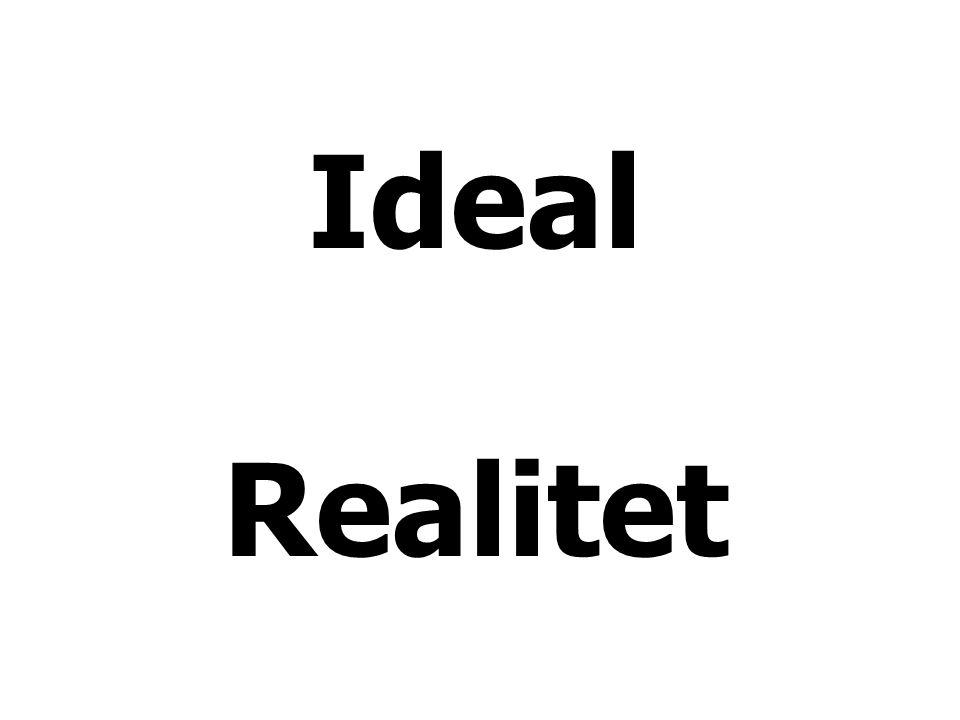 Ideal Realitet