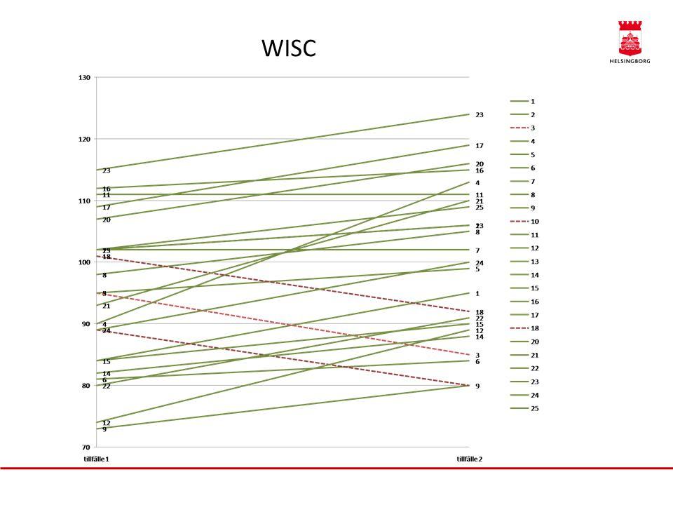 WISC Kristin