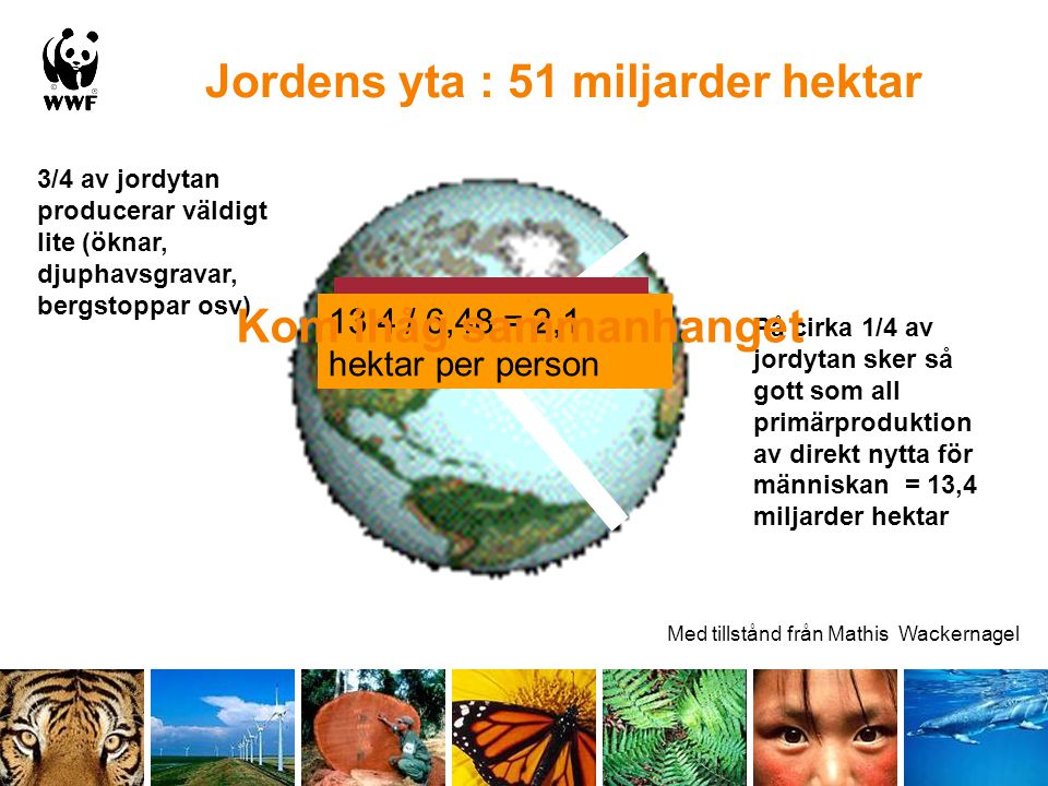 Jordens yta : 51 miljarder hektar