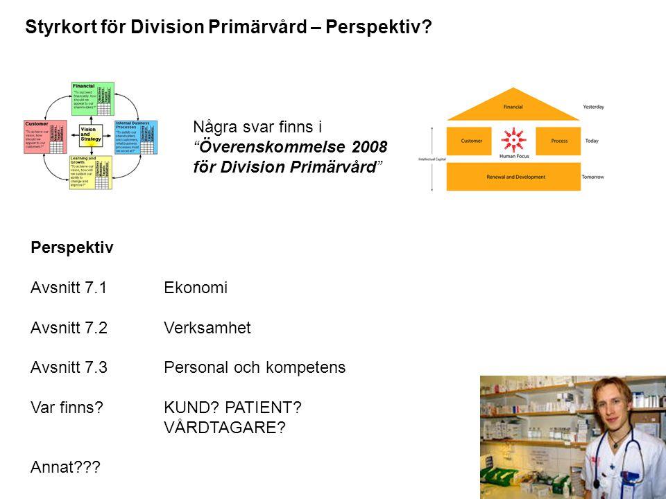 Styrkort för Division Primärvård – Perspektiv