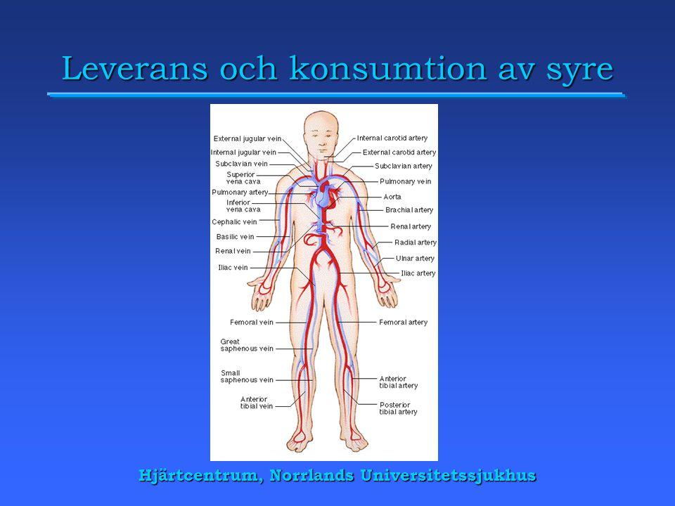 Leverans och konsumtion av syre