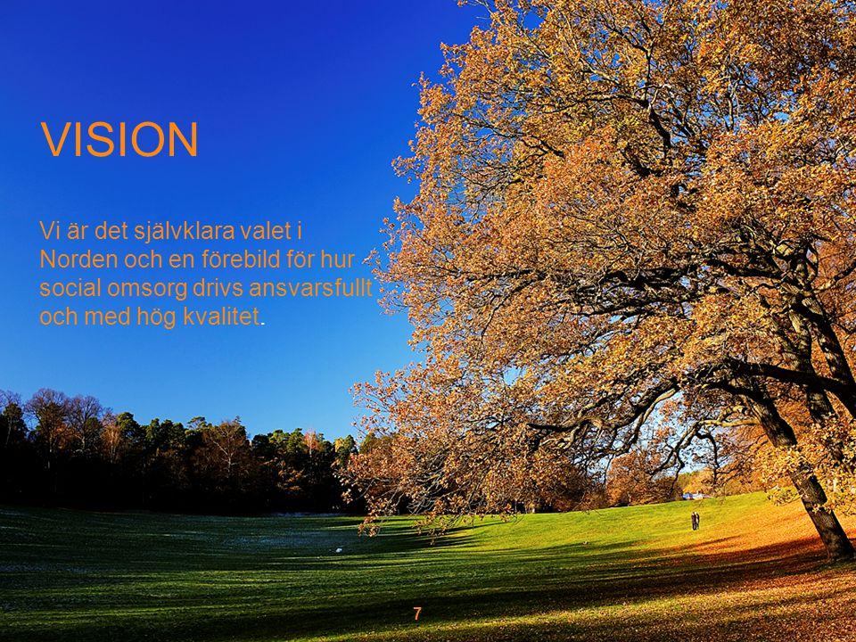 VISION Vi är det självklara valet i Norden och en förebild för hur social omsorg drivs ansvarsfullt och med hög kvalitet.