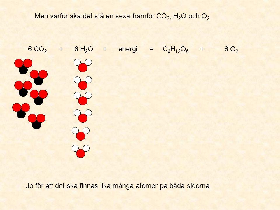 Men varför ska det stå en sexa framför CO2, H2O och O2
