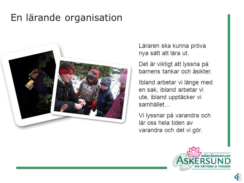 En lärande organisation