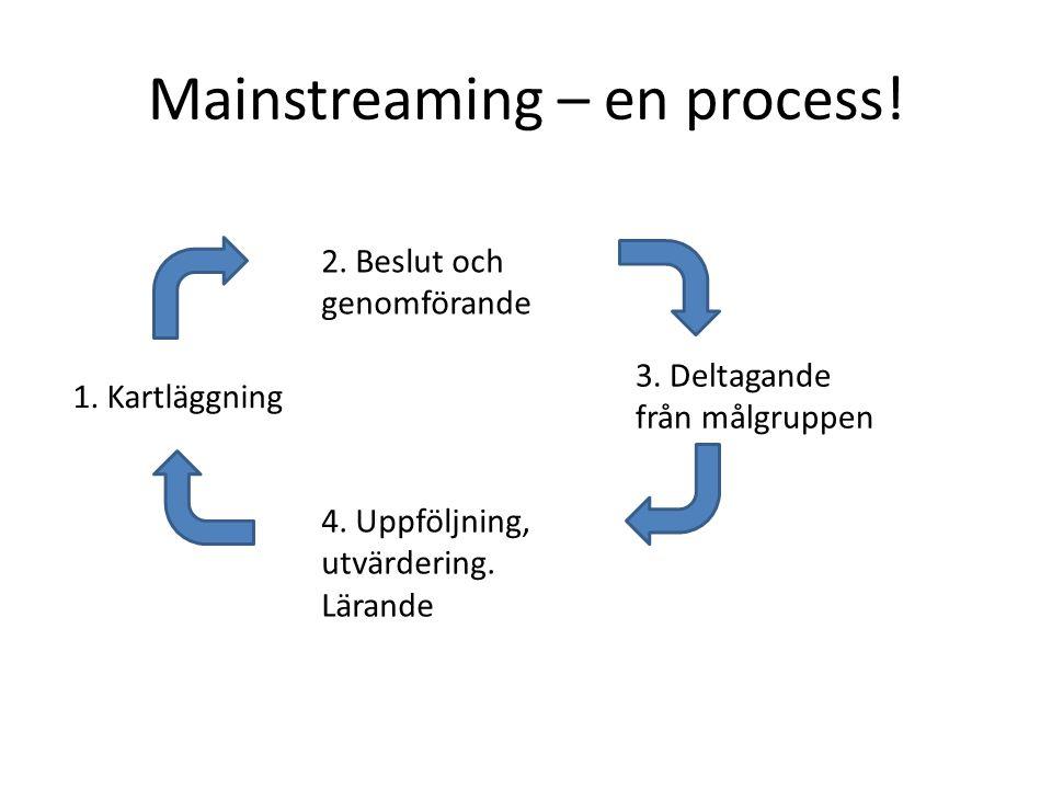 Mainstreaming – en process!