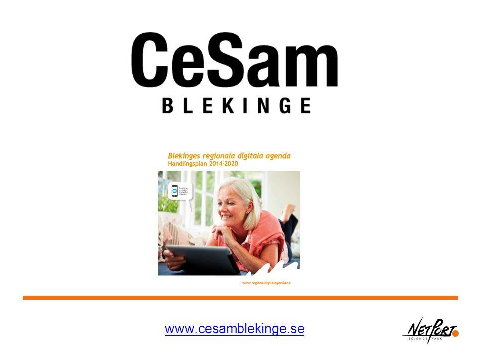 www.cesamblekinge.se