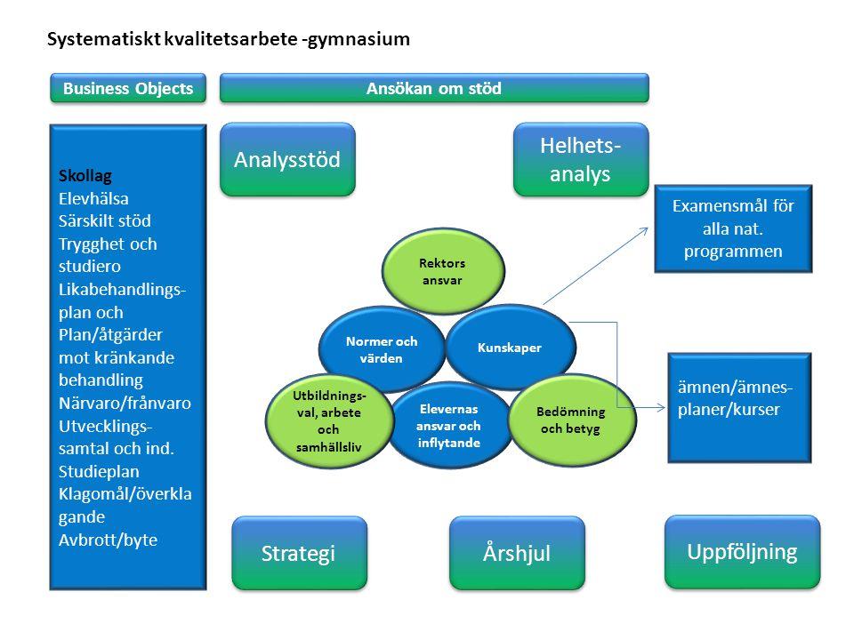 Analysstöd Helhets-analys Strategi Årshjul Uppföljning