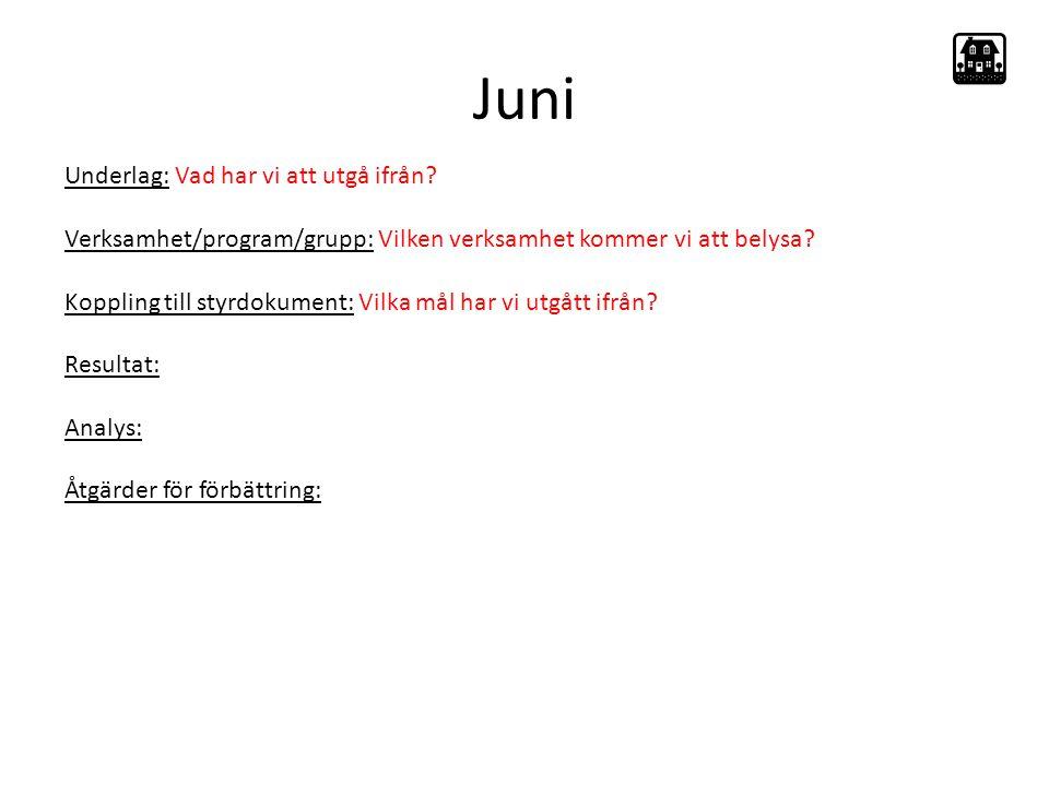 Juni Underlag: Vad har vi att utgå ifrån