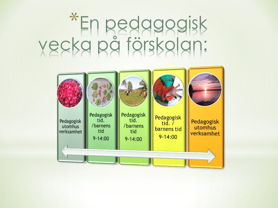 En pedagogisk vecka på förskolan:
