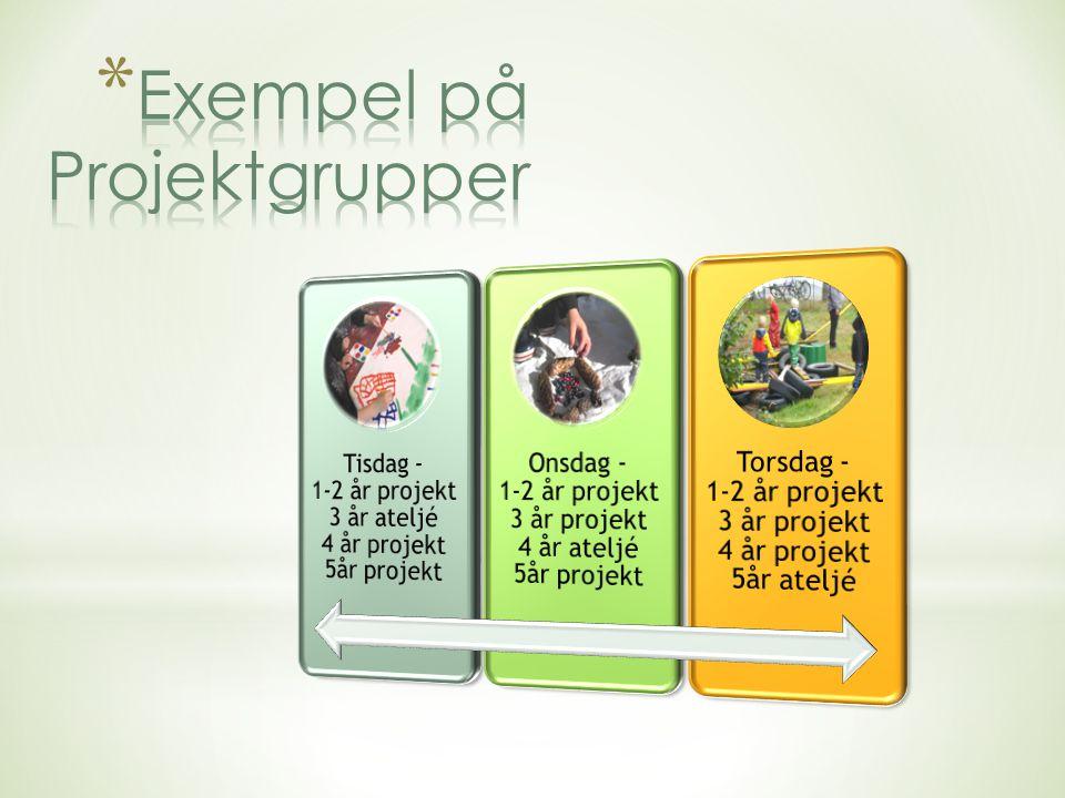 Exempel på Projektgrupper