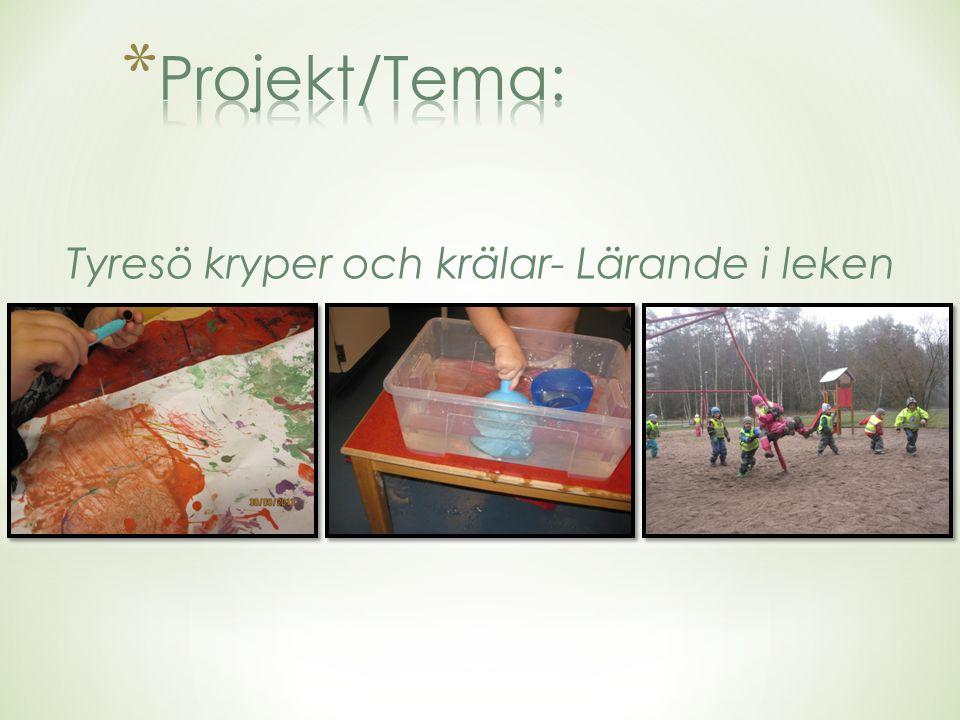 Projekt/Tema: Tyresö kryper och krälar- Lärande i leken
