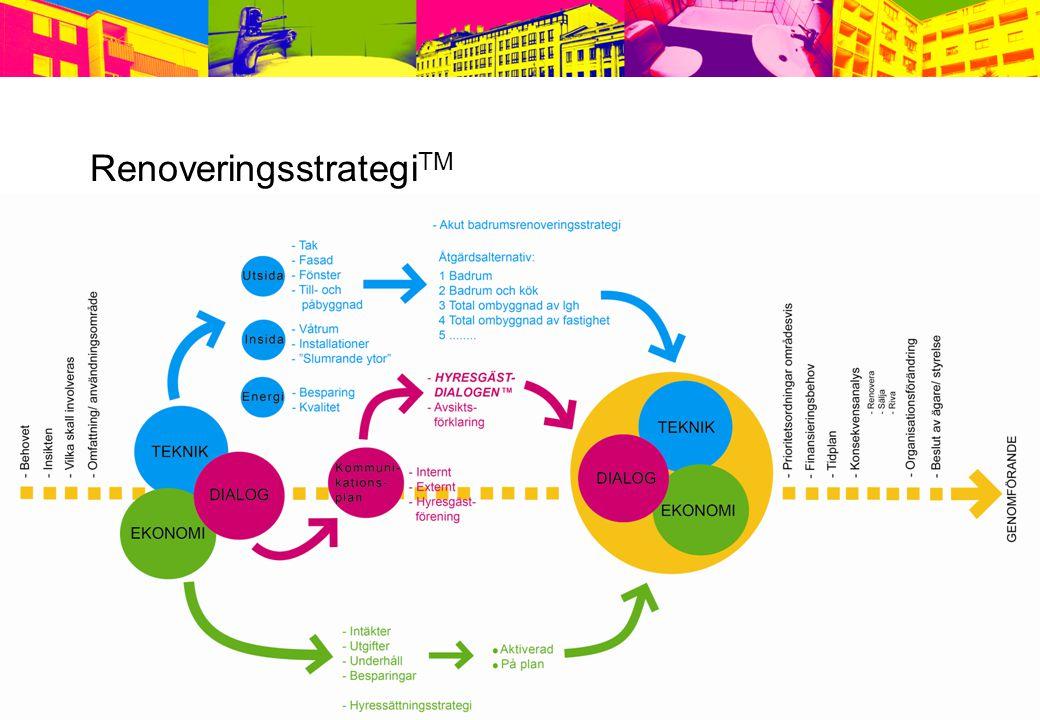 RenoveringsstrategiTM