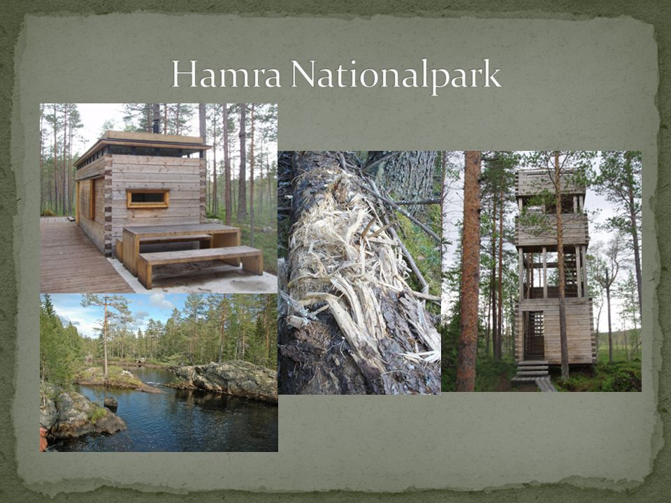 Hamra Nationalpark