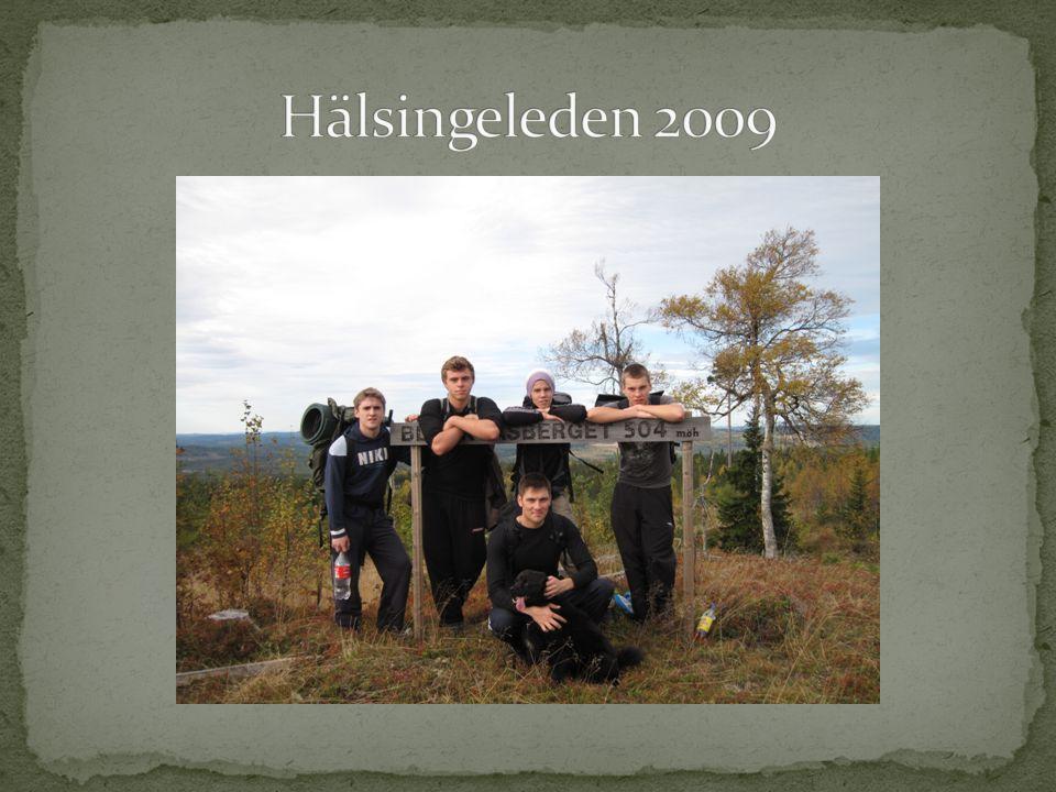 Hälsingeleden 2009