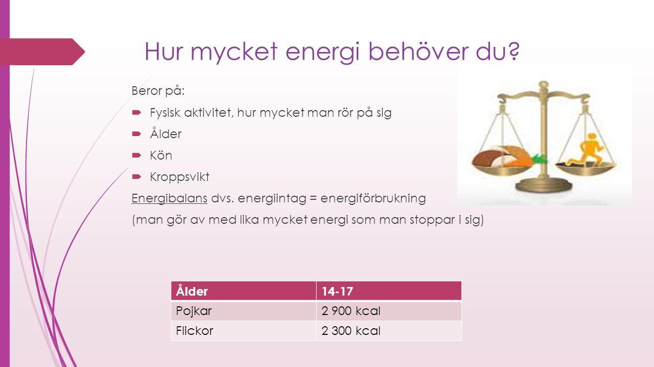 Hur mycket energi behöver du