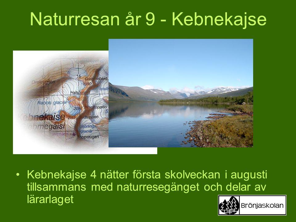 Naturresan år 9 - Kebnekajse