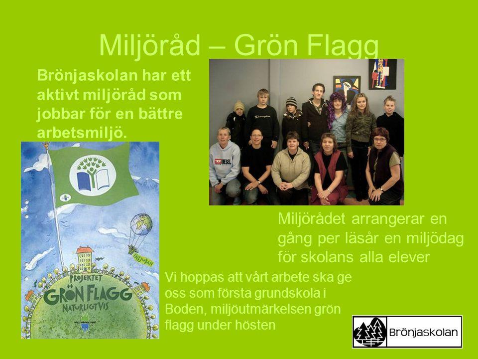 Miljöråd – Grön Flagg Brönjaskolan har ett aktivt miljöråd som jobbar för en bättre arbetsmiljö.