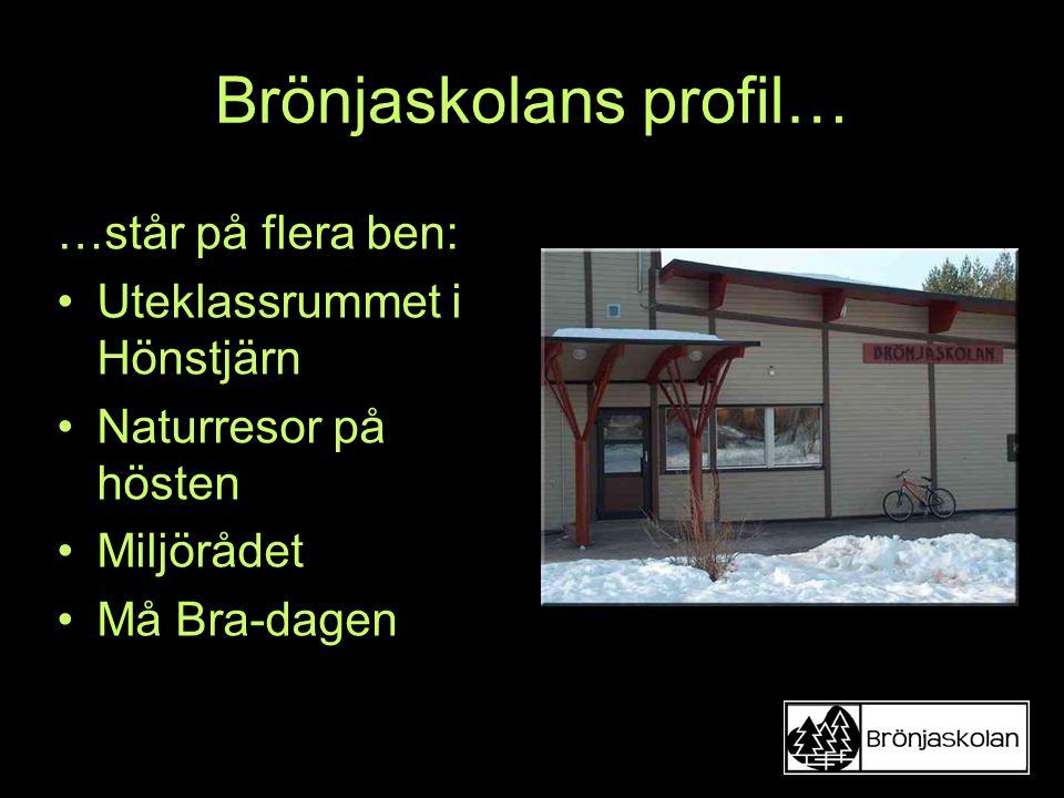 Brönjaskolans profil…