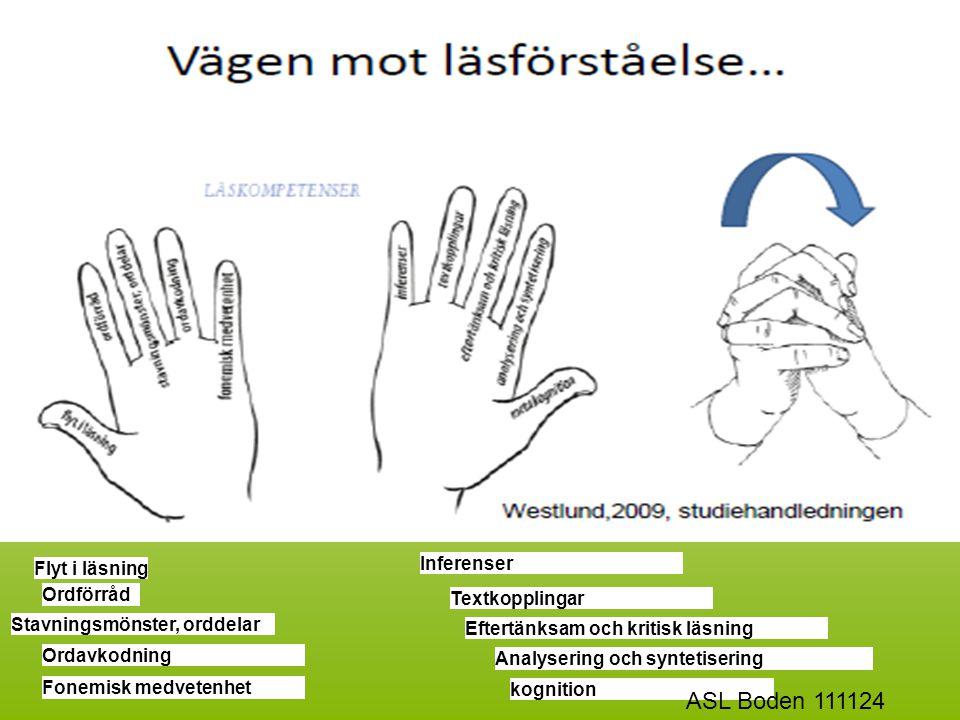 ASL Boden 111124 Inferenser Flyt i läsning Ordförråd Textkopplingar