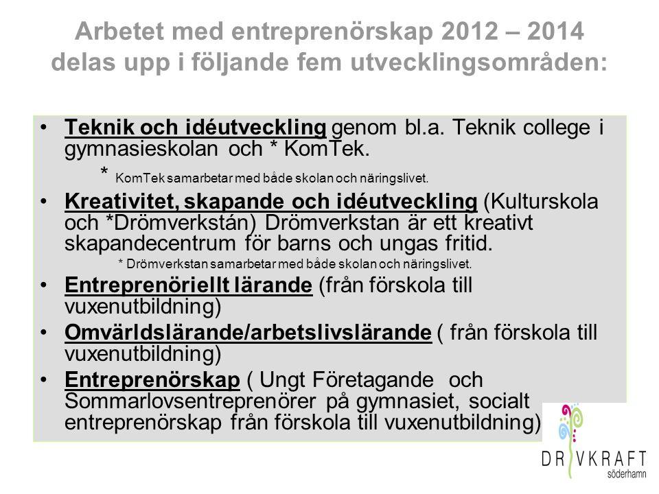 Arbetet med entreprenörskap 2012 – 2014 delas upp i följande fem utvecklingsområden: