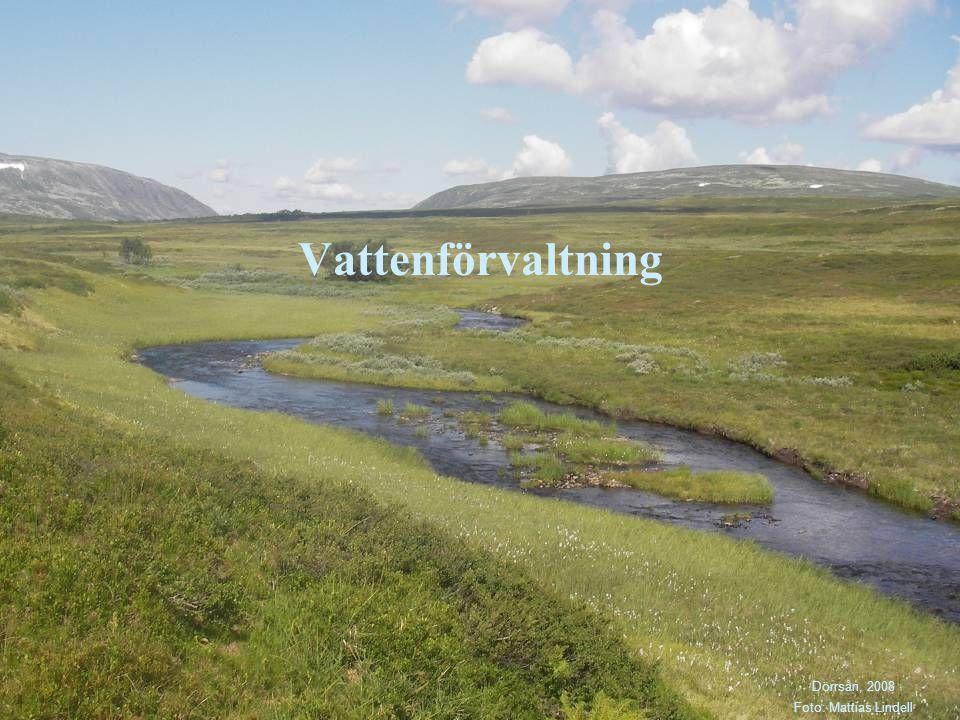 Vattenförvaltning Dörrsån, 2008 Foto: Mattias Lindell