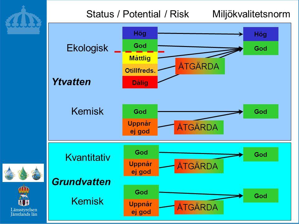 Status / Potential / Risk
