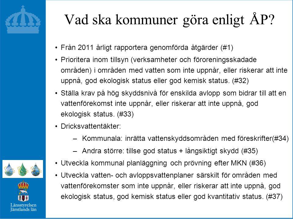 Vad ska kommuner göra enligt ÅP