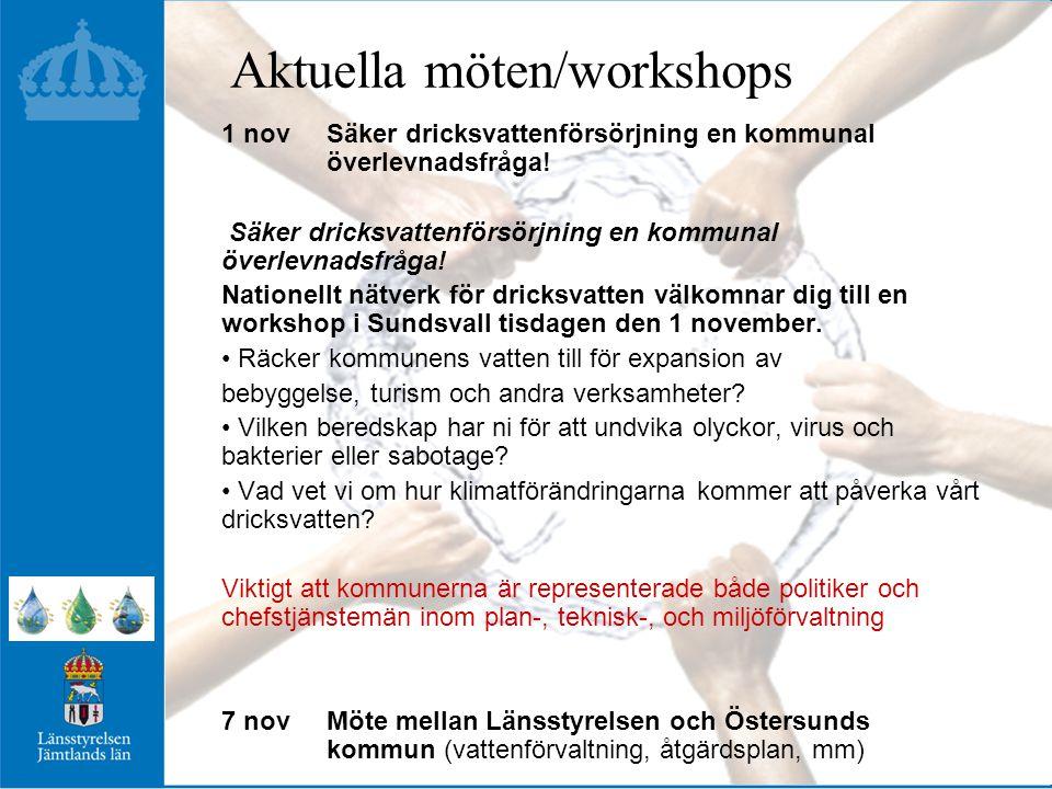 Aktuella möten/workshops