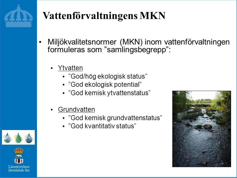 Vattenförvaltningens MKN
