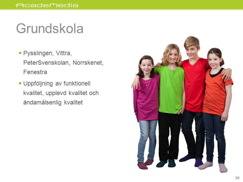 Grundskola Pysslingen, Vittra, PeterSvenskolan, Norrskenet, Fenestra