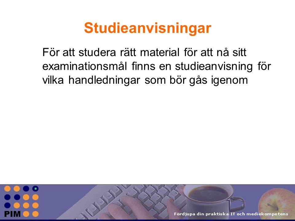Studieanvisningar För att studera rätt material för att nå sitt examinationsmål finns en studieanvisning för vilka handledningar som bör gås igenom.