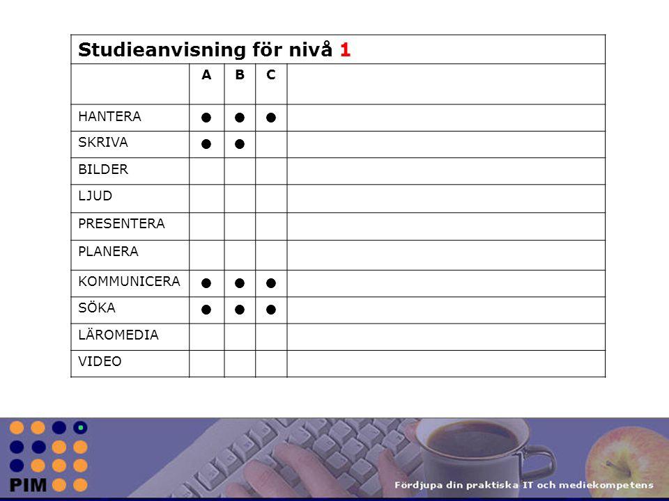 Studieanvisning för nivå 1