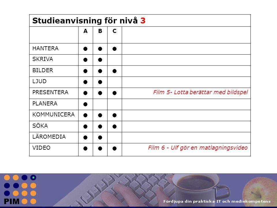 Studieanvisning för nivå 3