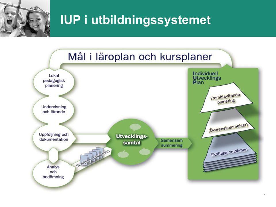 IUP i utbildningssystemet