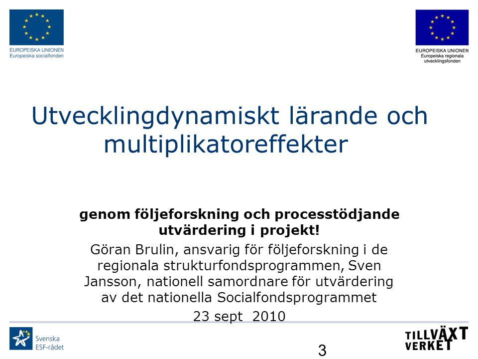 Utvecklingdynamiskt lärande och multiplikatoreffekter