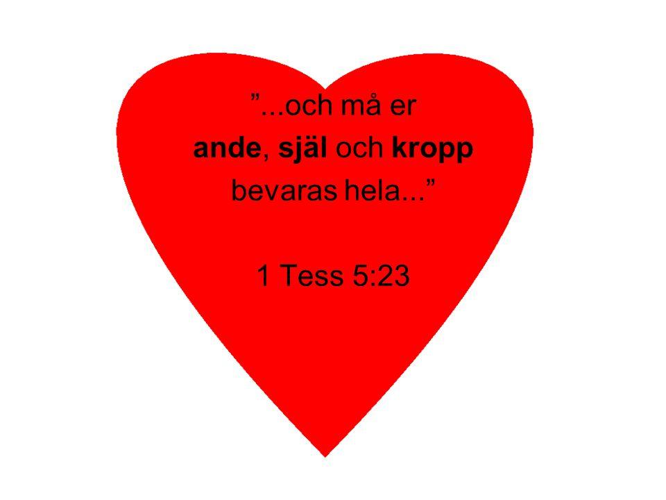 ...och må er ande, själ och kropp bevaras hela... 1 Tess 5:23