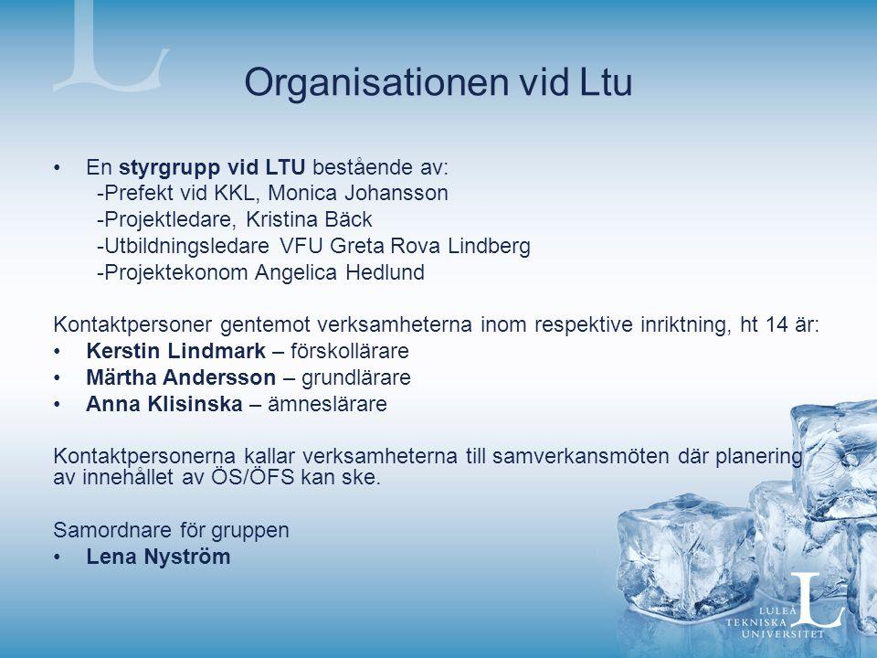 Organisationen vid Ltu