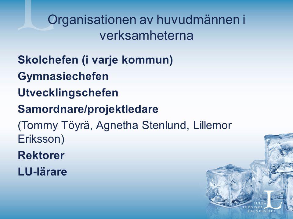 Organisationen av huvudmännen i verksamheterna